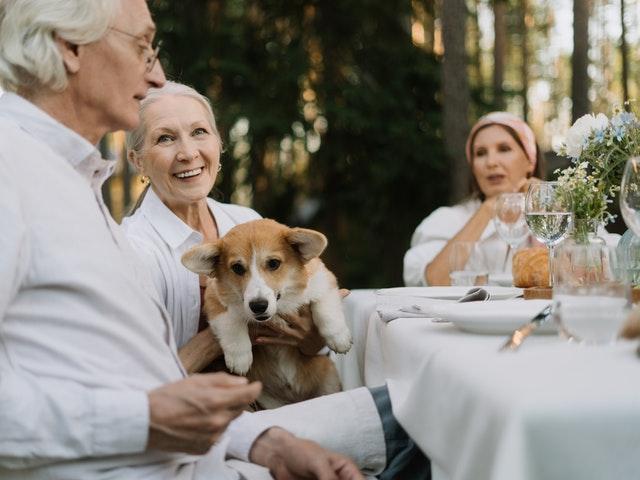 How do Animals Help the Elderly? Tips for Choosing a Pet for Seniors